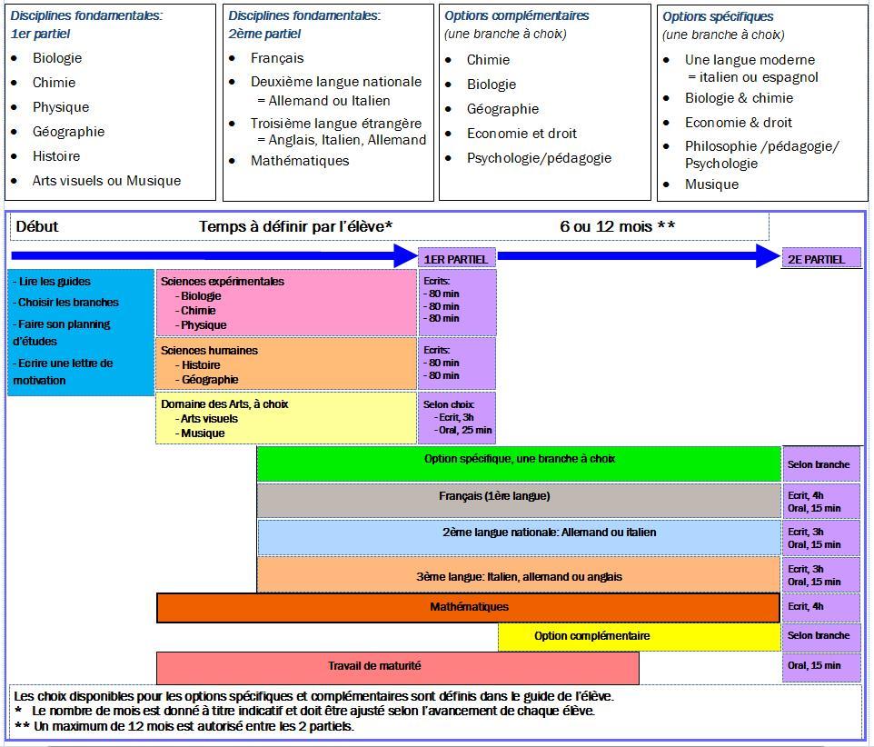 disciplines-et-structure-de-la-maturite-suisse
